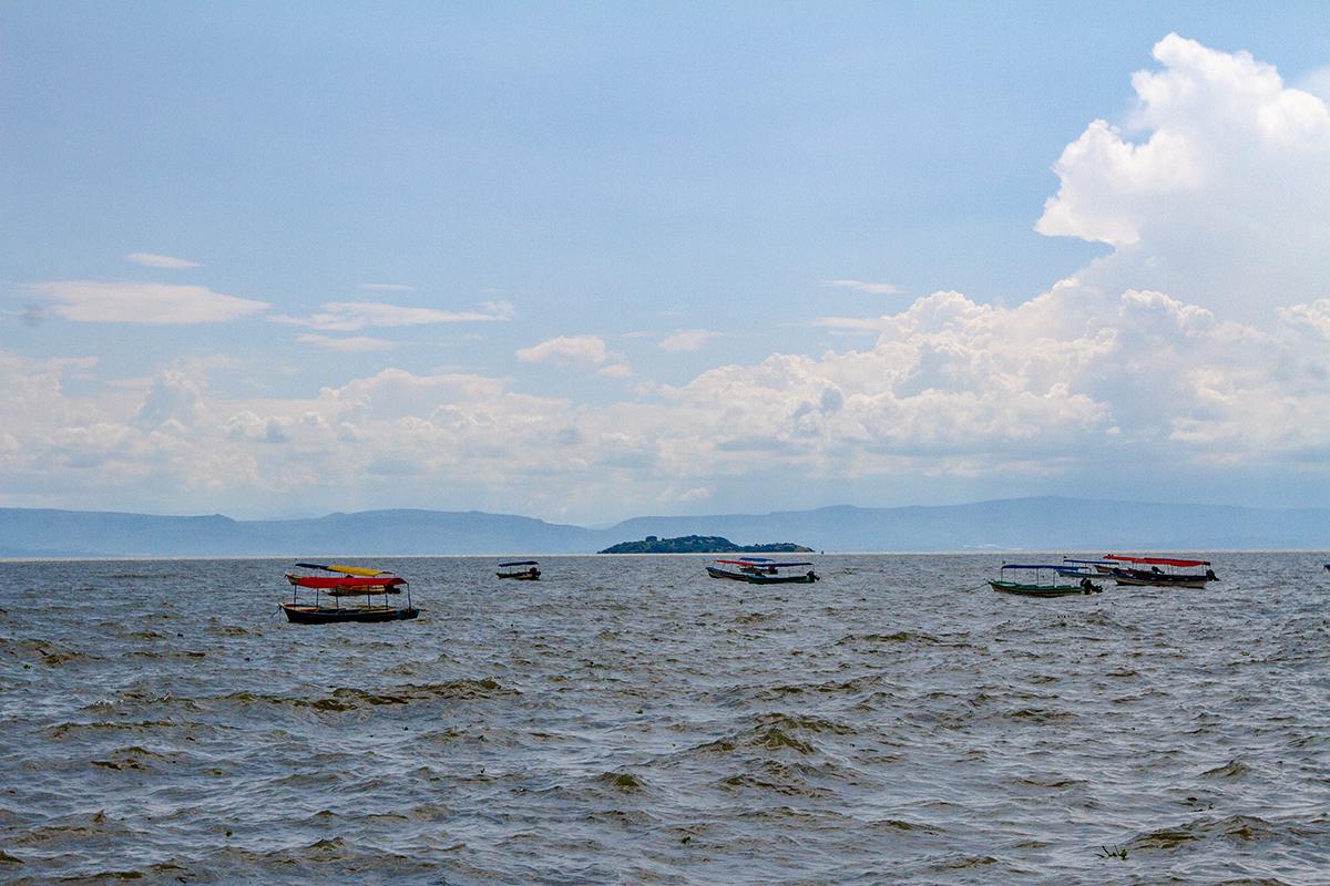 Chapala: la enfermedad del Lago