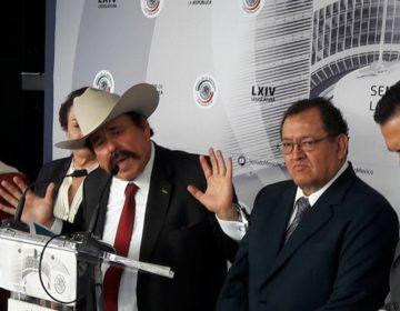 Armando Guadiana: los negocios de un senador
