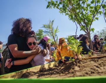 Un jardín de la memoria para los tres cineastas desaparecidos