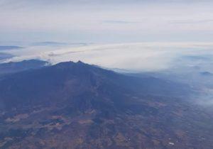 Atribuyen incendios en Jalisco a la intención de sembrar aguacate