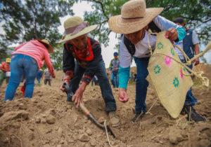 Atenco: La marcha al campo