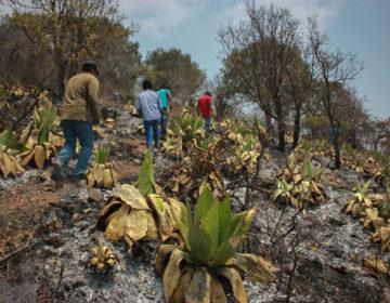 Desplazados de El Calvario viven un nuevo viacrucis