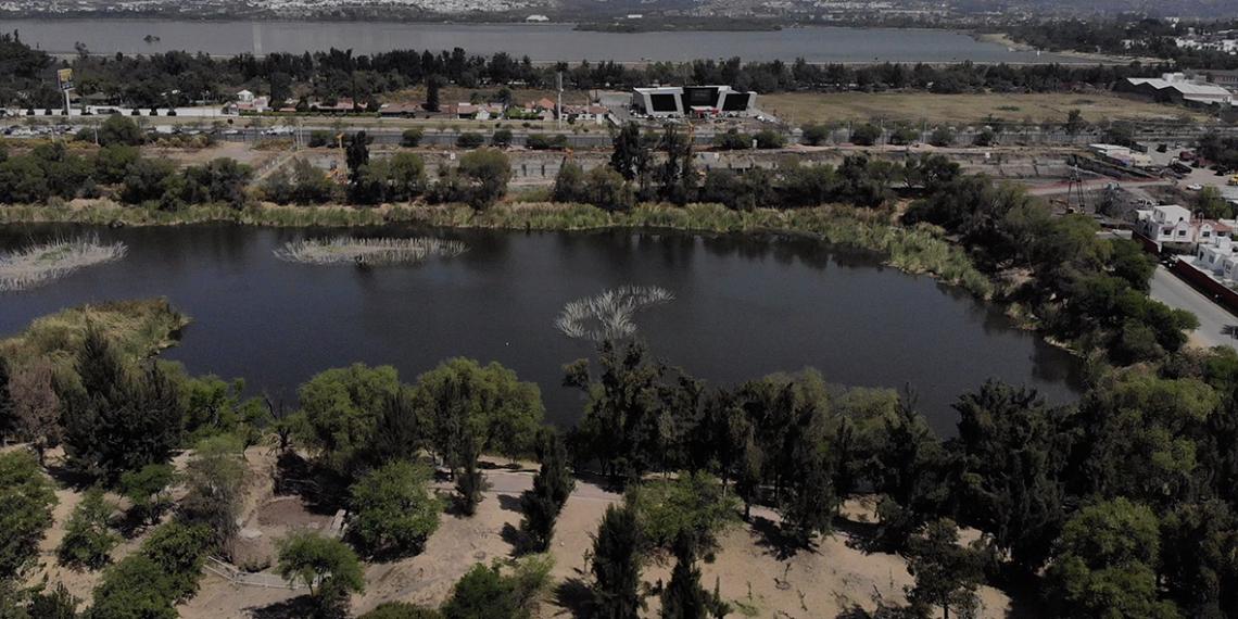 Empresa MRP omite estudios para continuar con City Center en León