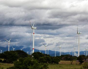 Quijotes contra empresas eólicas en México