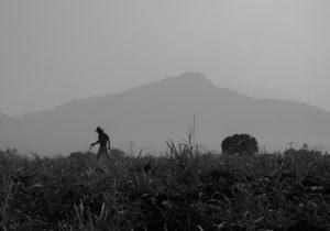 Las fosas que el gobierno de Javier Duarte ocultó