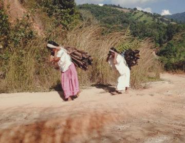Detrás los surcos: historias de las mujeres de San Quintín