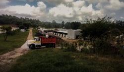Destrucción de bosque en Veracruz,…