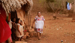 La existencia maya en tiempos…
