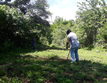 Ranchito viejo: construyendo la educación ambiental