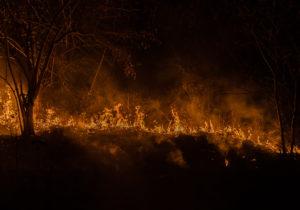 Un borde, un frente y un fuego