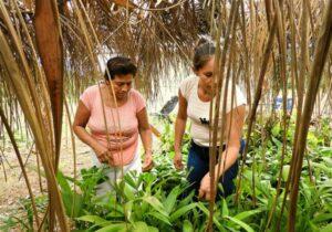 Mujeres bolivianas protegen selva amazónica