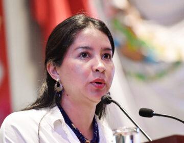 Elisa Zepeda protesta contra liberación de Miguel Peralta