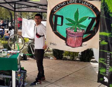 Piden legalizar mariguana con campamento afuera del Senado