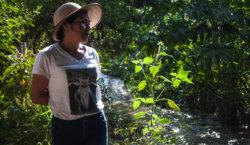 Guardianas del río Metlapanapa