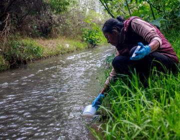 Mujeres del Metlapanapa se preparan para limpiar su río