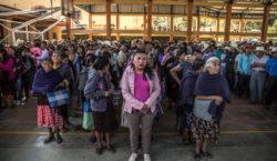 Elecciones en Eloxochitlán: el desafío…