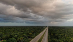 Tren Maya fragmentaría 8 áreas…