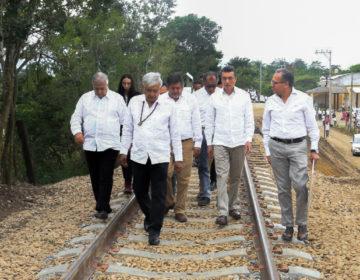 La tardía consulta del Tren Maya en Palenque