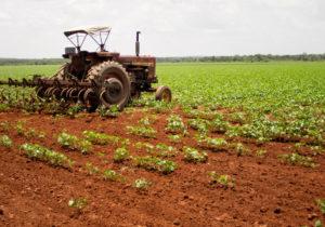 América Latina impulsa cambios en la agricultura por cambio climático