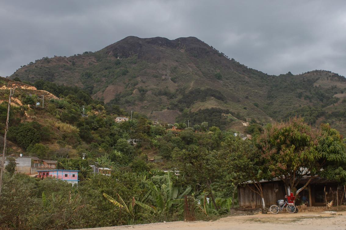 Comunidad de Juquila Yucucani municipio de Tlacoachistlahuaca con poco más de 500 habitantes en su mayoría mujeres que forman familias enteras dedicadas a la siembra de amapola.